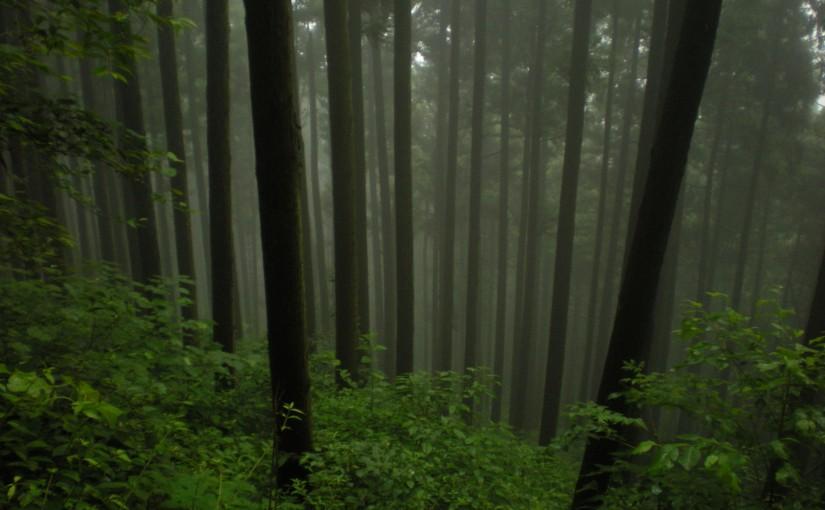 Mitake woods? a hike w/Miura